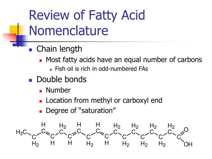 Review of Fatty Acid Nomenclature