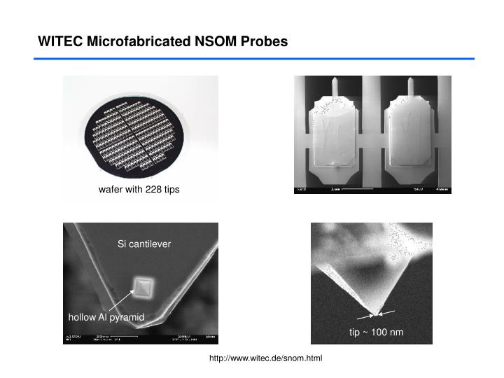 WITEC Microfabricated NSOM Probes