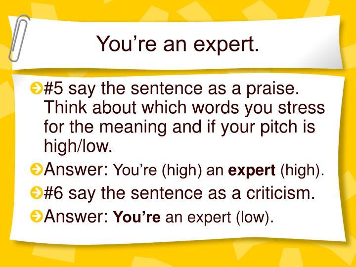 You're an expert.