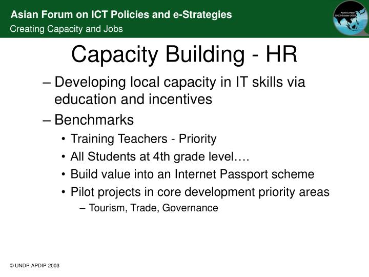 Developing local capacity in IT skills via education and incentives