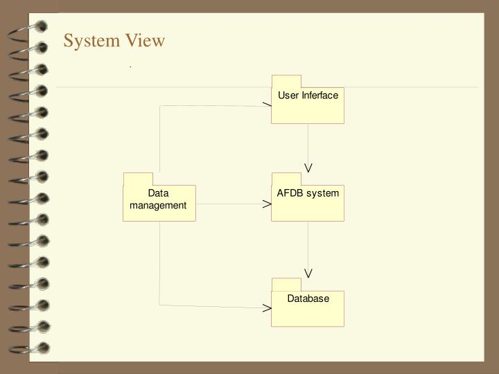 System View