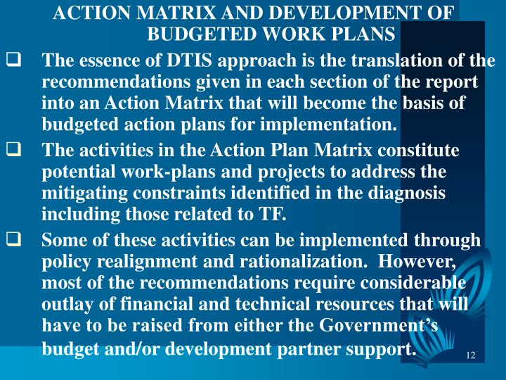 ACTION MATRIX AND DEVELOPMENT OF BUDGETED WORK PLANS