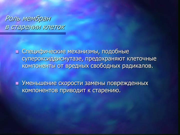 Роль мембран