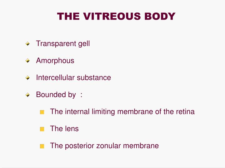 THE VITREOUS BODY