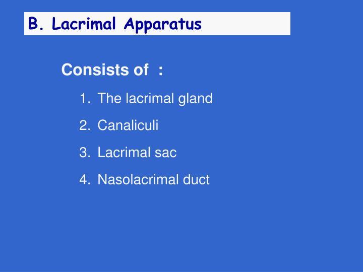 B. Lacrimal Apparatus