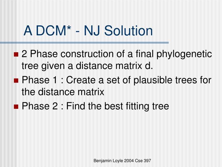 A DCM* - NJ Solution