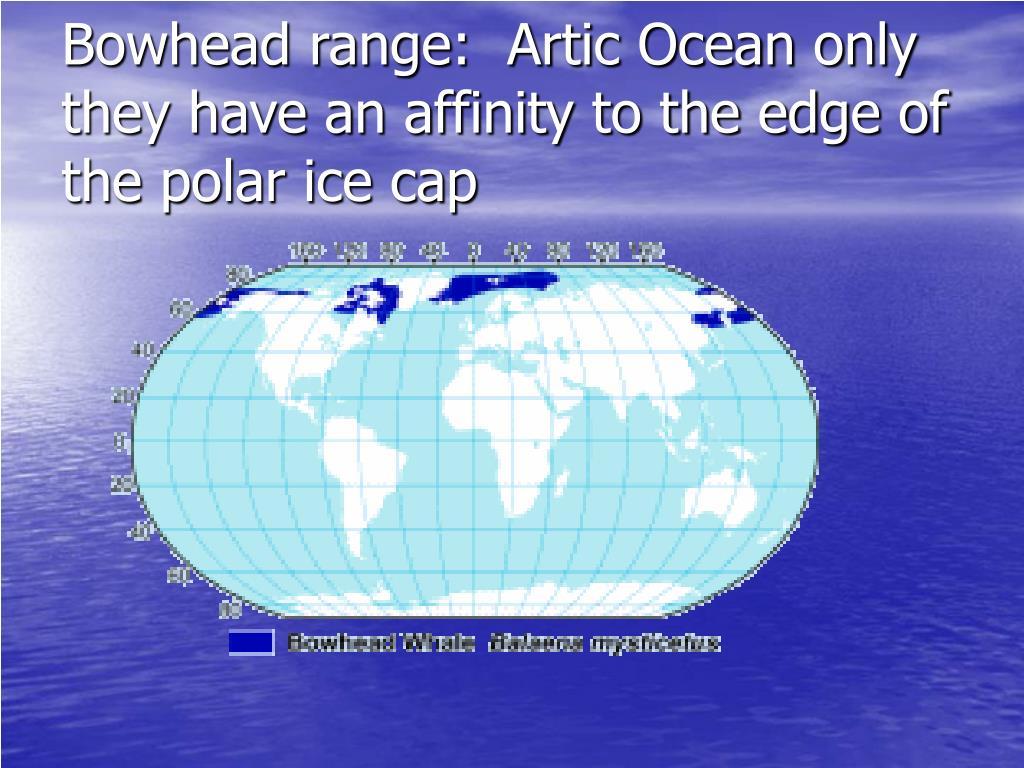 Bowhead range:  Artic Ocean only