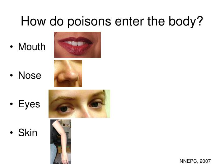 How do poisons enter the body?