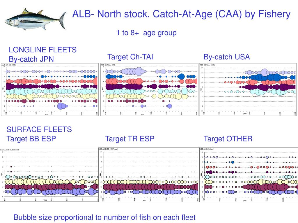 ALB- North stock. Catch-At-Age (CAA) by Fishery