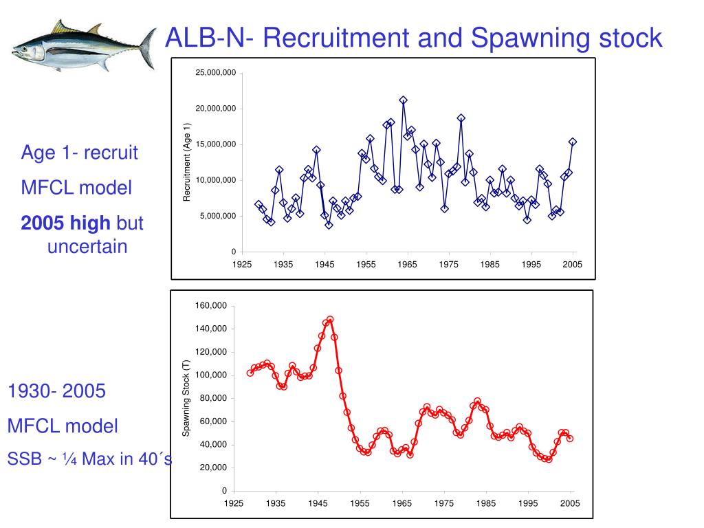 ALB-N- Recruitment and Spawning stock