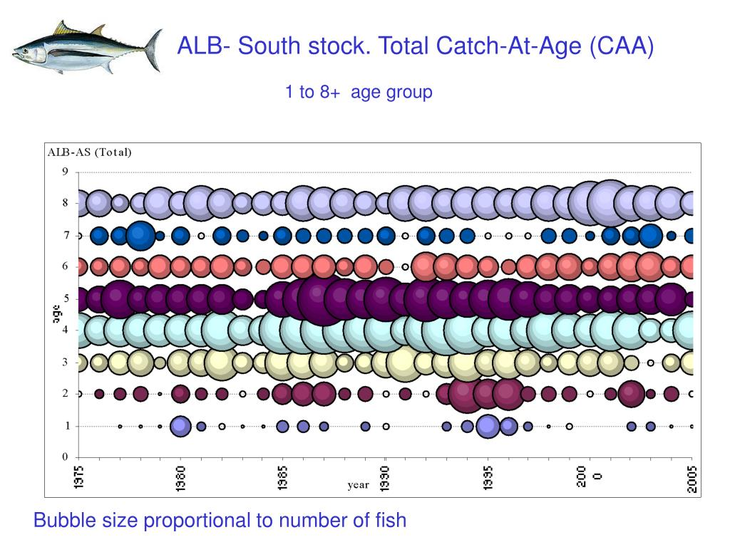 ALB- South stock. Total Catch-At-Age (CAA)
