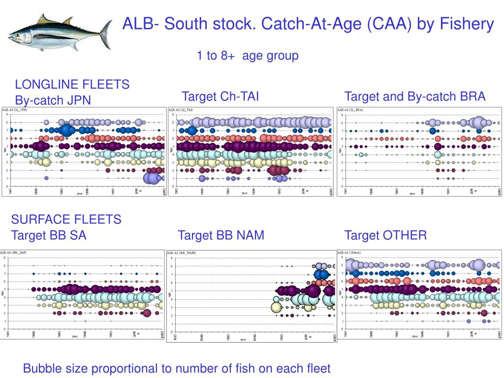 ALB- South stock. Catch-At-Age (CAA) by Fishery