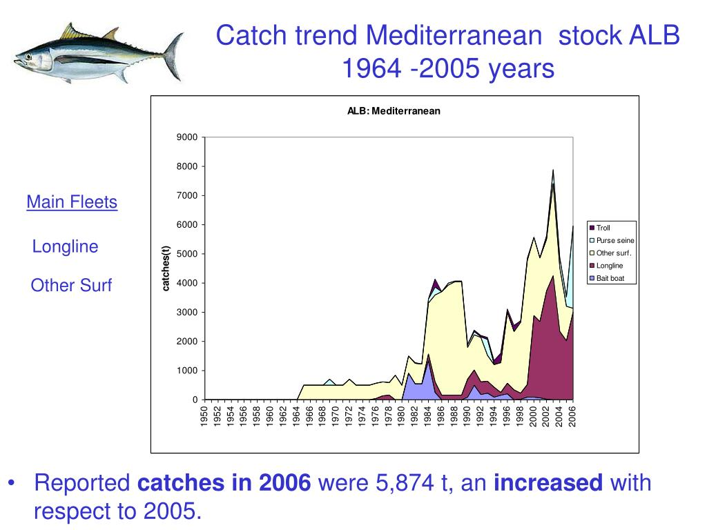 Catch trend Mediterranean  stock ALB