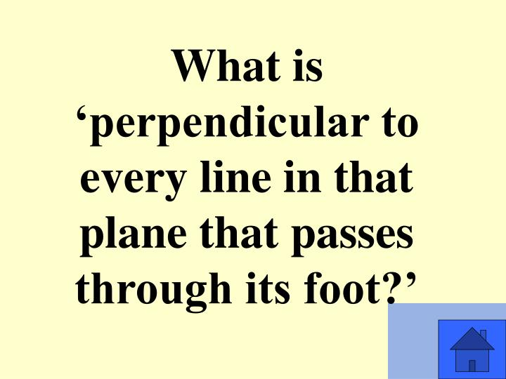 What is 'perpendicular to every line in that plane that passes through its foot?'