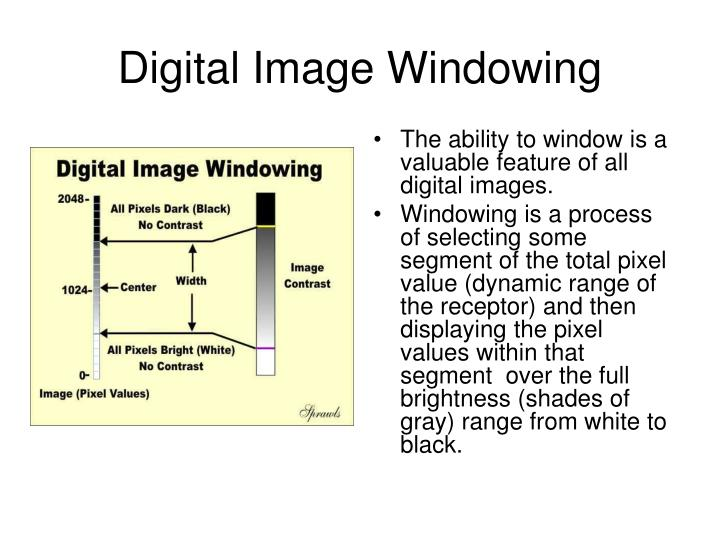 Digital Image Windowing