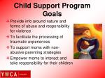child support program goals1