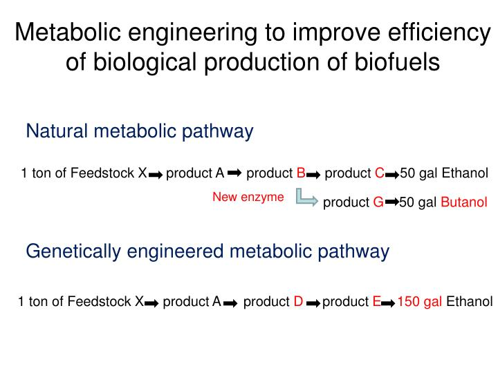 Metabolic engineering to improve efficiency of biological production of biofuels
