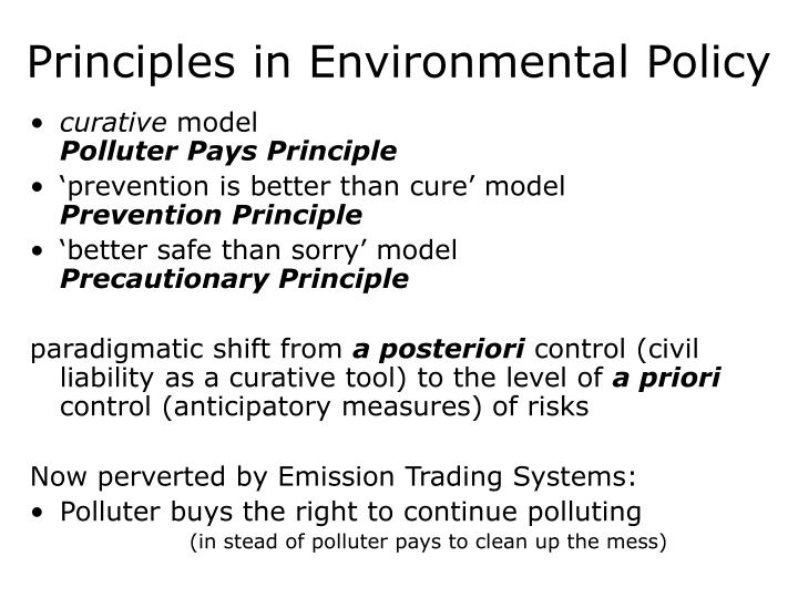 Principles in environmental policy