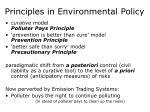principles in environmental policy