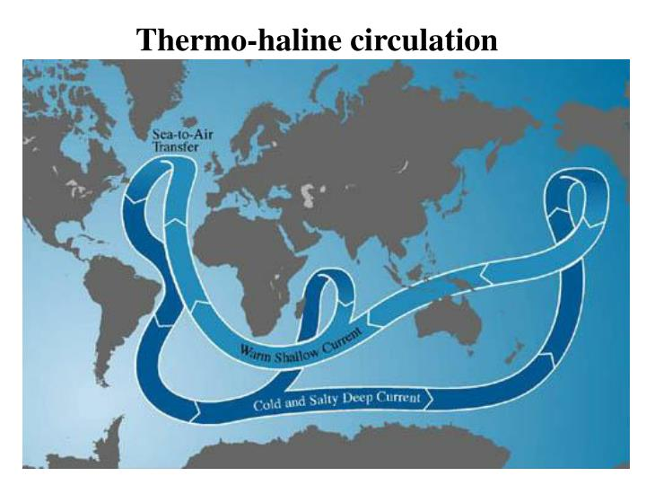 Thermo-haline circulation