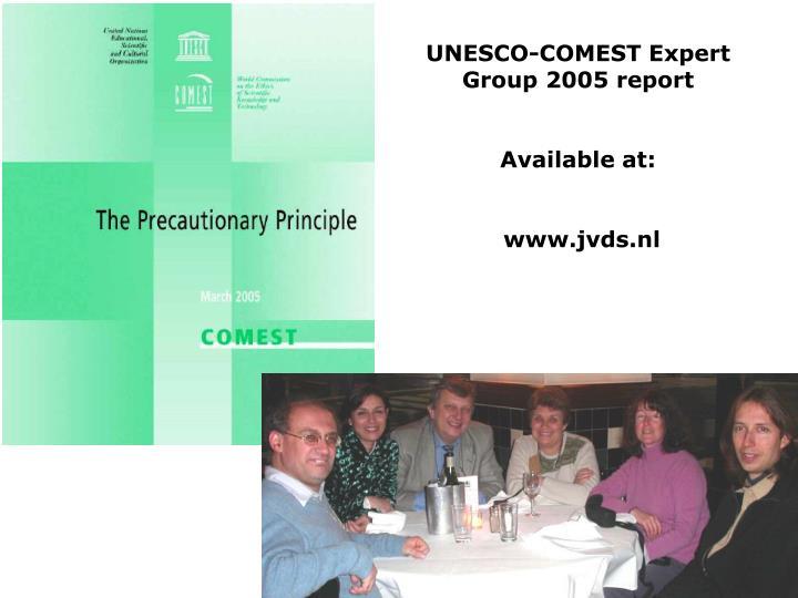 UNESCO-COMEST Expert Group 2005 report