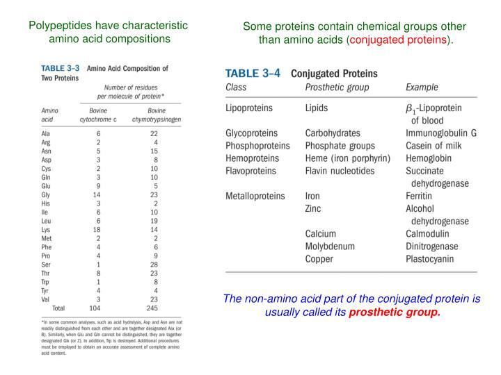 Polypeptides have characteristic