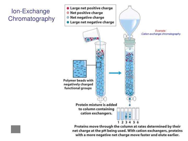 Ion-Exchange