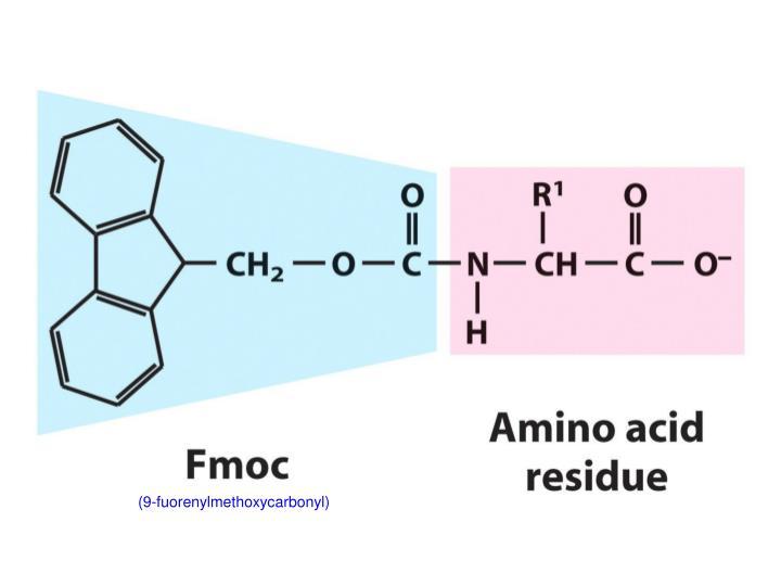 (9-fuorenylmethoxycarbonyl)
