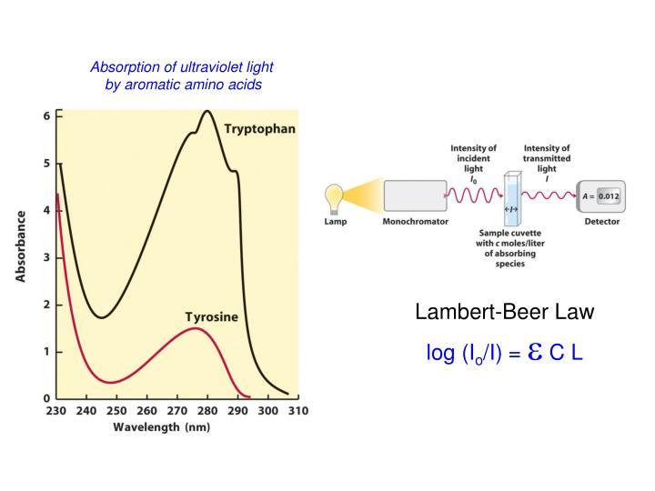 Absorption of ultraviolet light