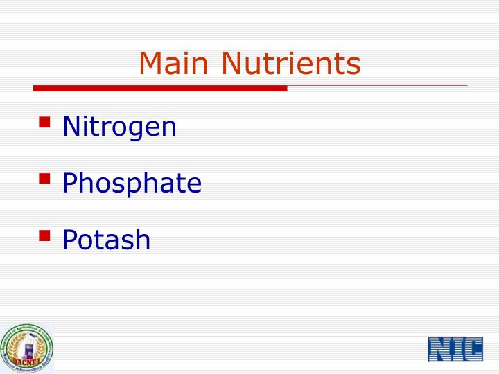 Main Nutrients