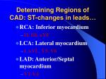 determining regions of cad st changes in leads