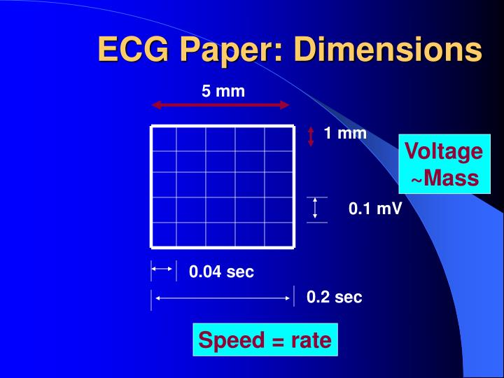 ECG Paper: Dimensions