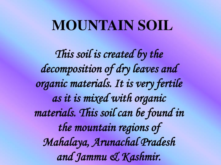 MOUNTAIN SOIL