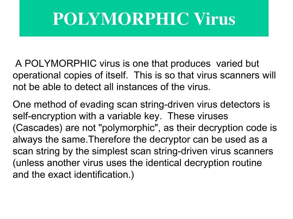 POLYMORPHIC Virus