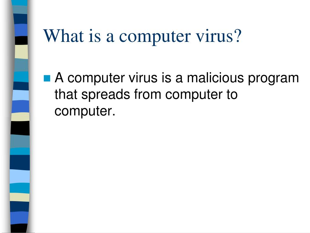 What is a computer virus?