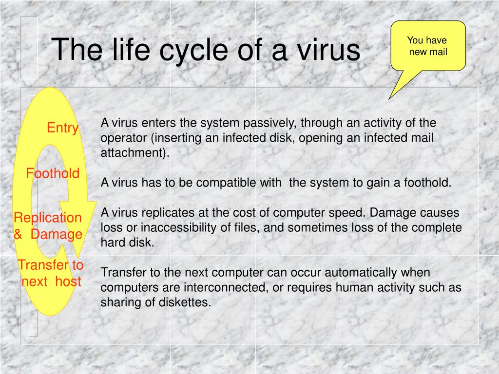 The life cycle of a virus