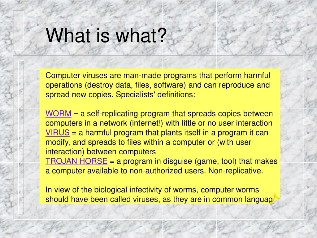 What is what?