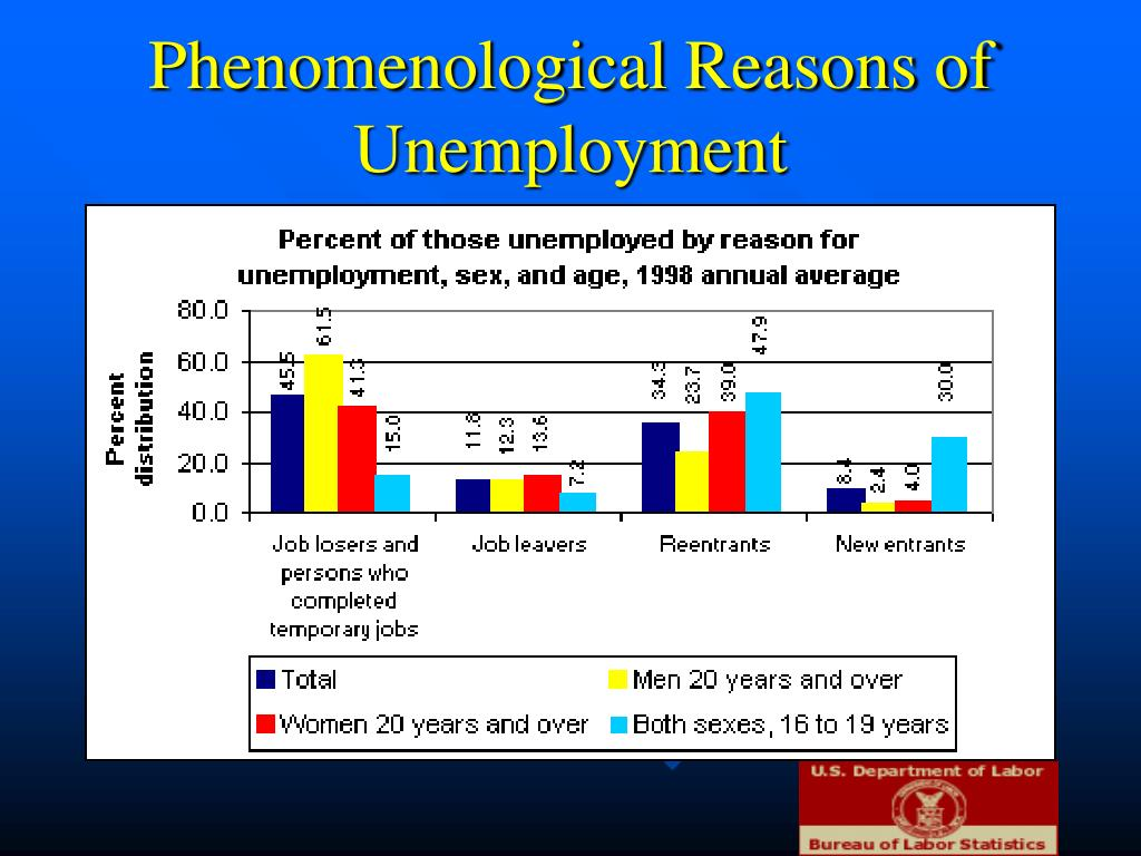 Phenomenological Reasons of Unemployment
