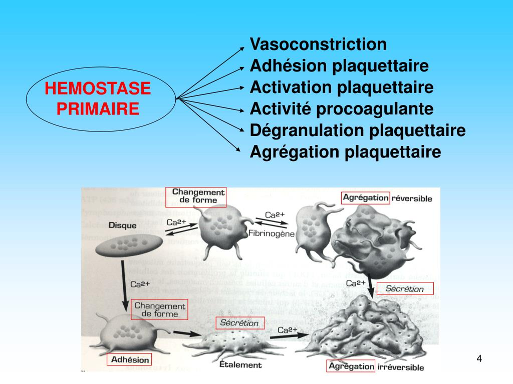 Vasoconstriction