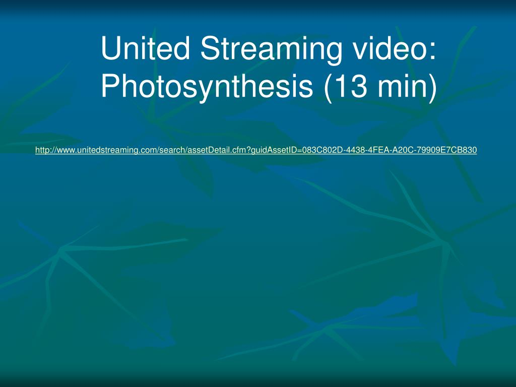 United Streaming video: