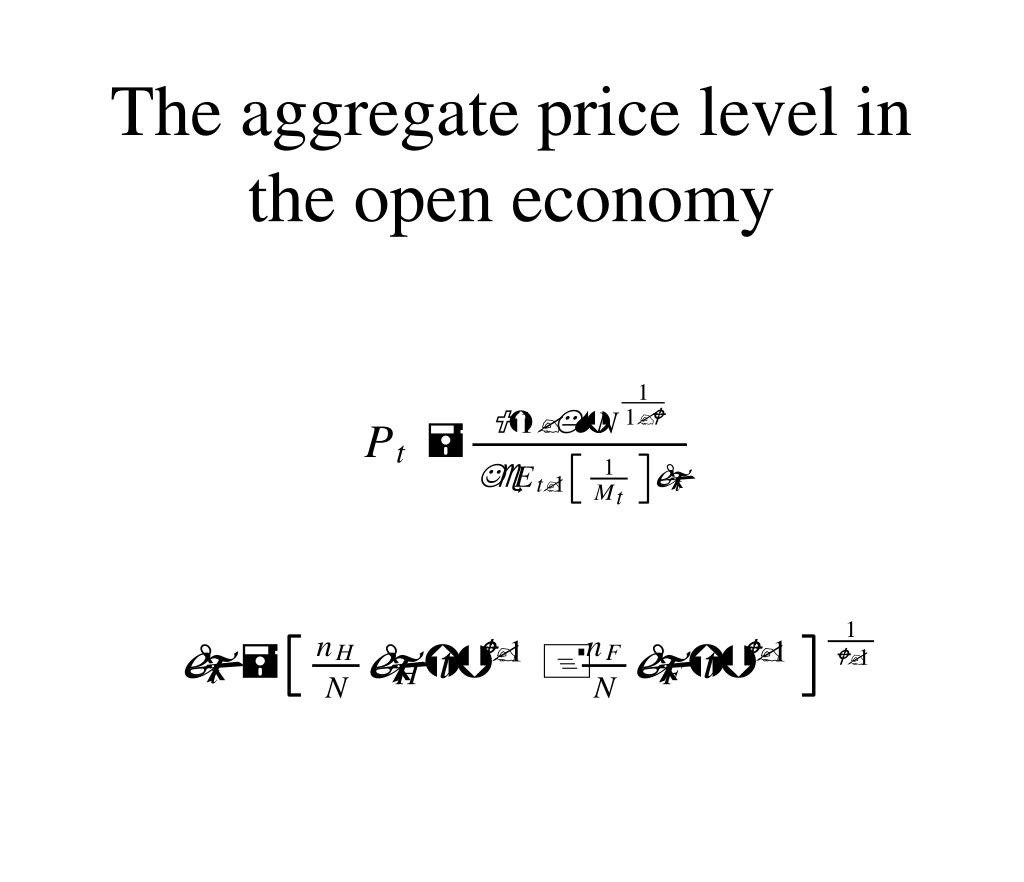 The aggregate price level in the open economy