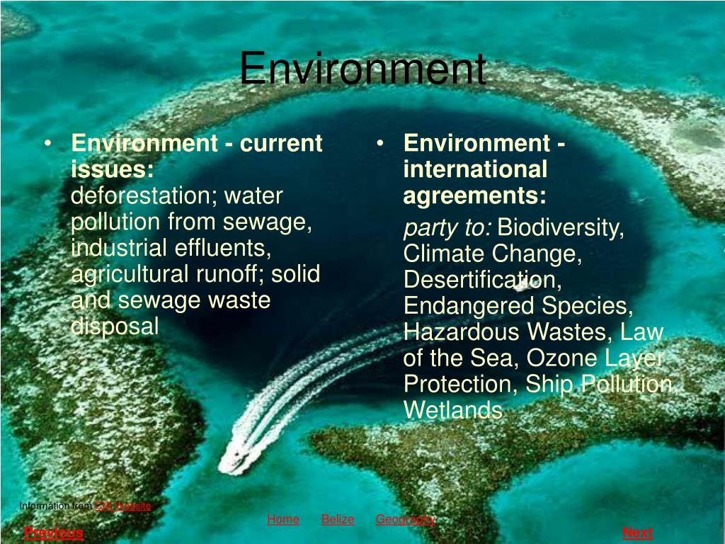 Environment - current issues: