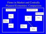 firms in market and centrally planned economies comparison