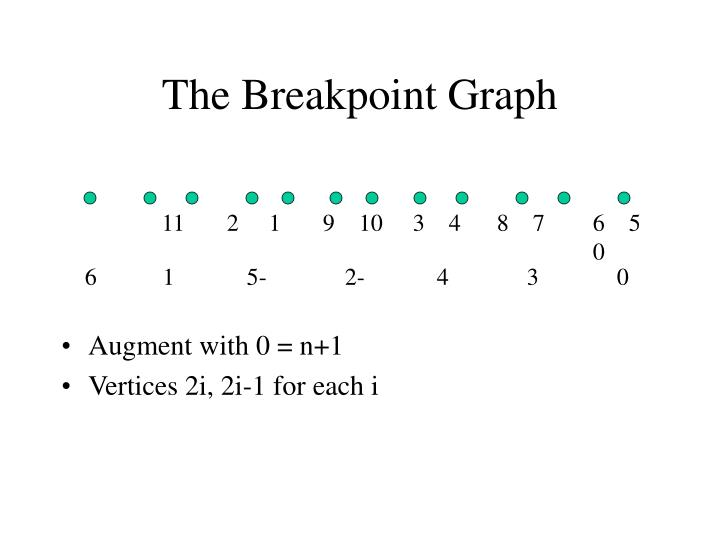 The Breakpoint Graph