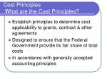 cost principles what are the cost principles