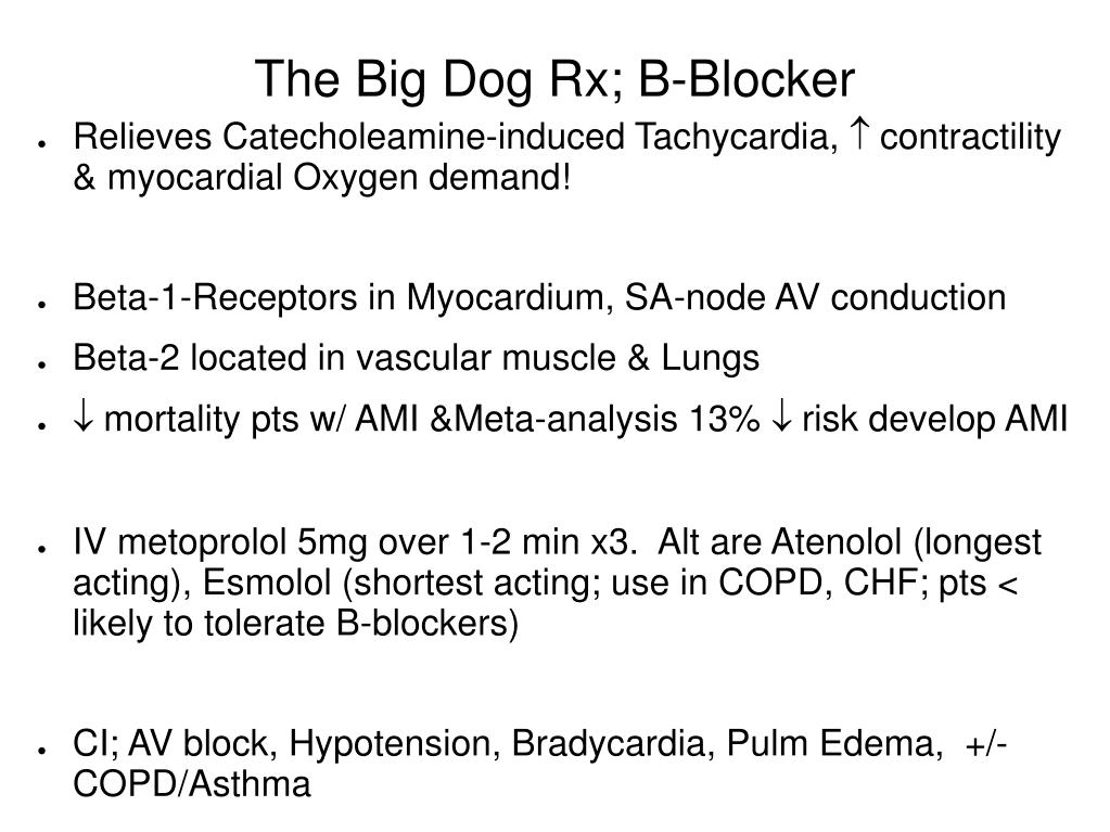 The Big Dog Rx; B-Blocker