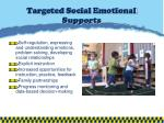 targeted social emotional supports