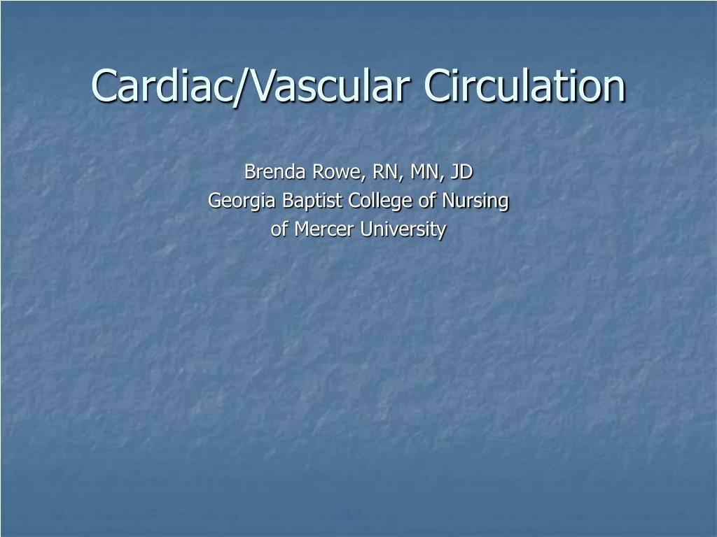 cardiac vascular circulation