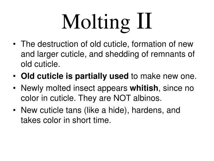Molting