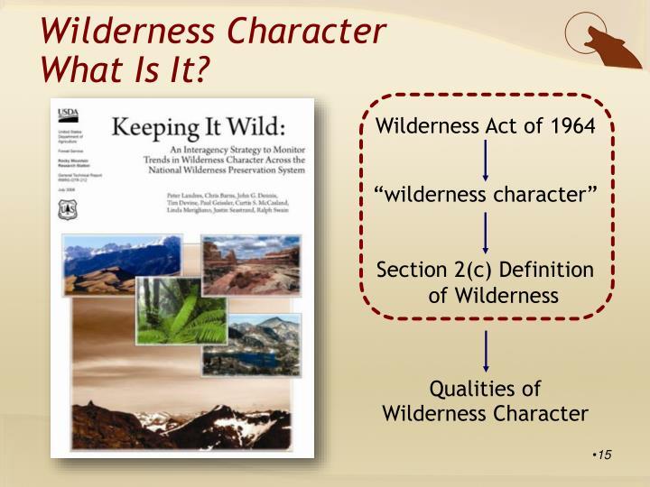 Wilderness Character